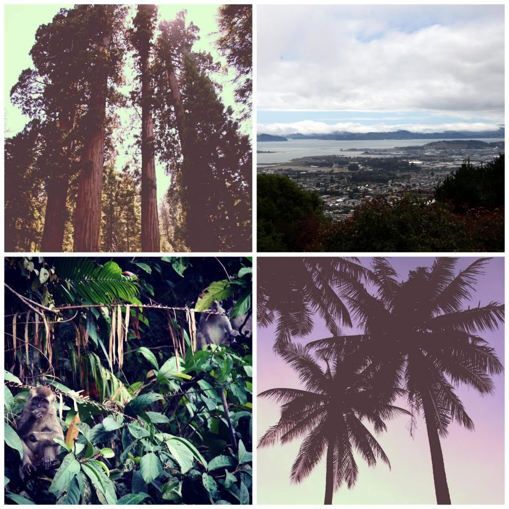 photo Instagram3_zps58a39103.jpg